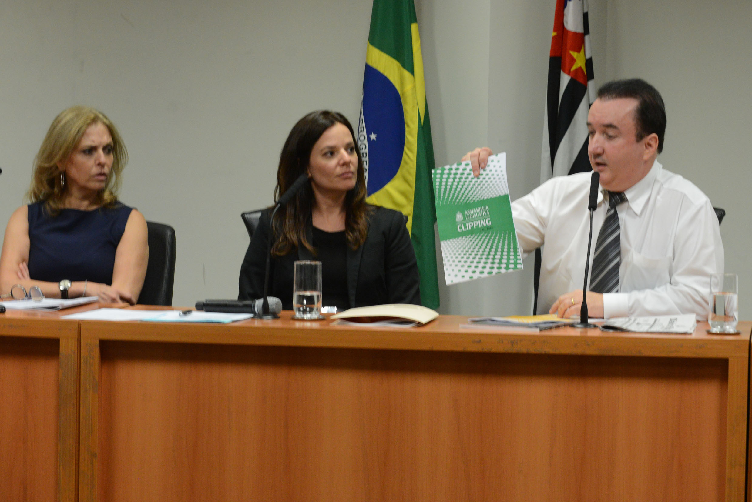 Mônica Menezes, Ana Cláudia Carletto, Sérgio Fernandes<a style='float:right' href='https://www3.al.sp.gov.br/repositorio/noticia/N-02-2014/fg158905.jpg' target=_blank><img src='/_img/material-file-download-white.png' width='14px' alt='Clique para baixar a imagem'></a>