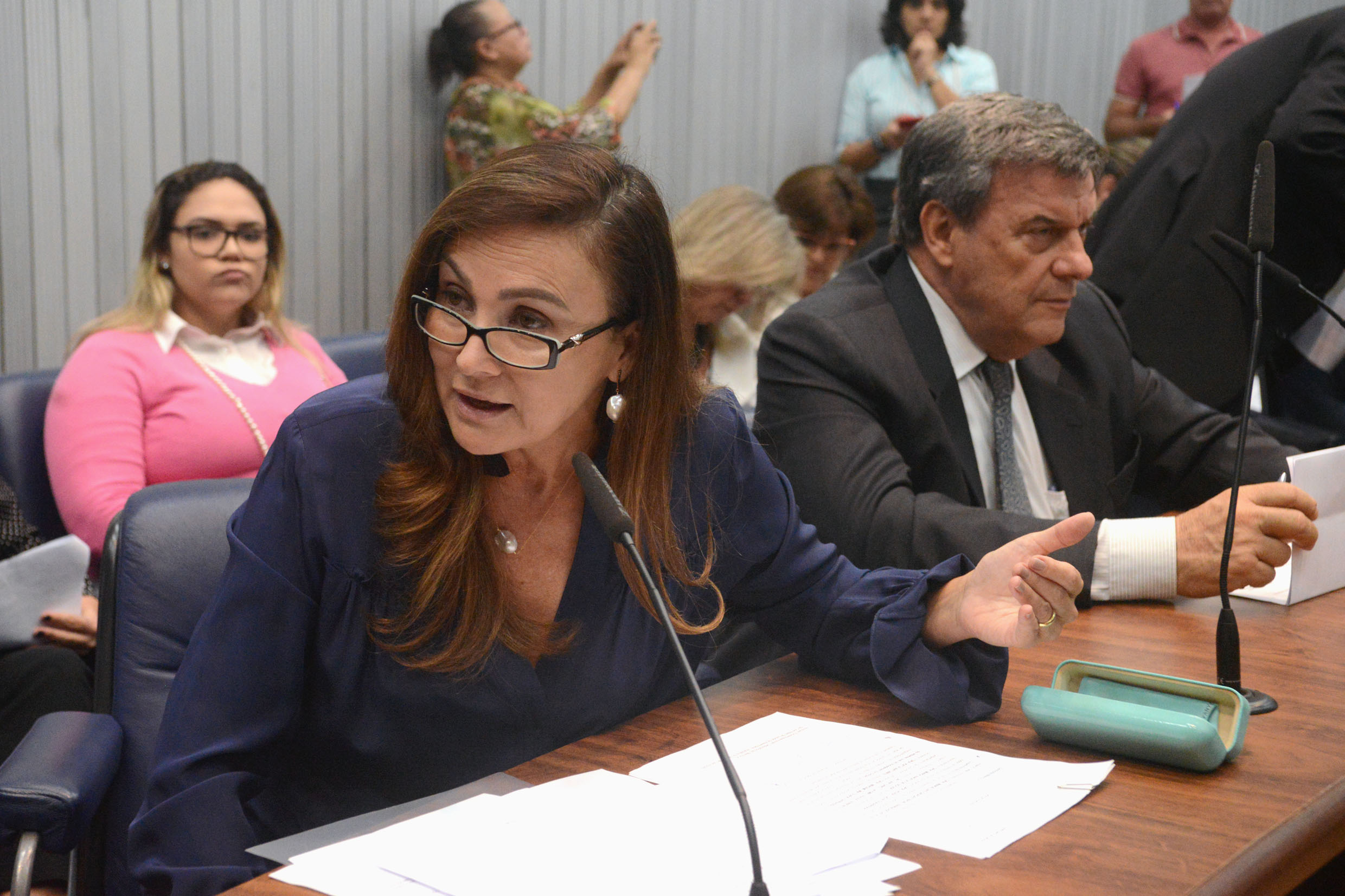 Parlamentares na comissão <a style='float:right' href='https://www3.al.sp.gov.br/repositorio/noticia/N-02-2019/fg229841.jpg' target=_blank><img src='/_img/material-file-download-white.png' width='14px' alt='Clique para baixar a imagem'></a>