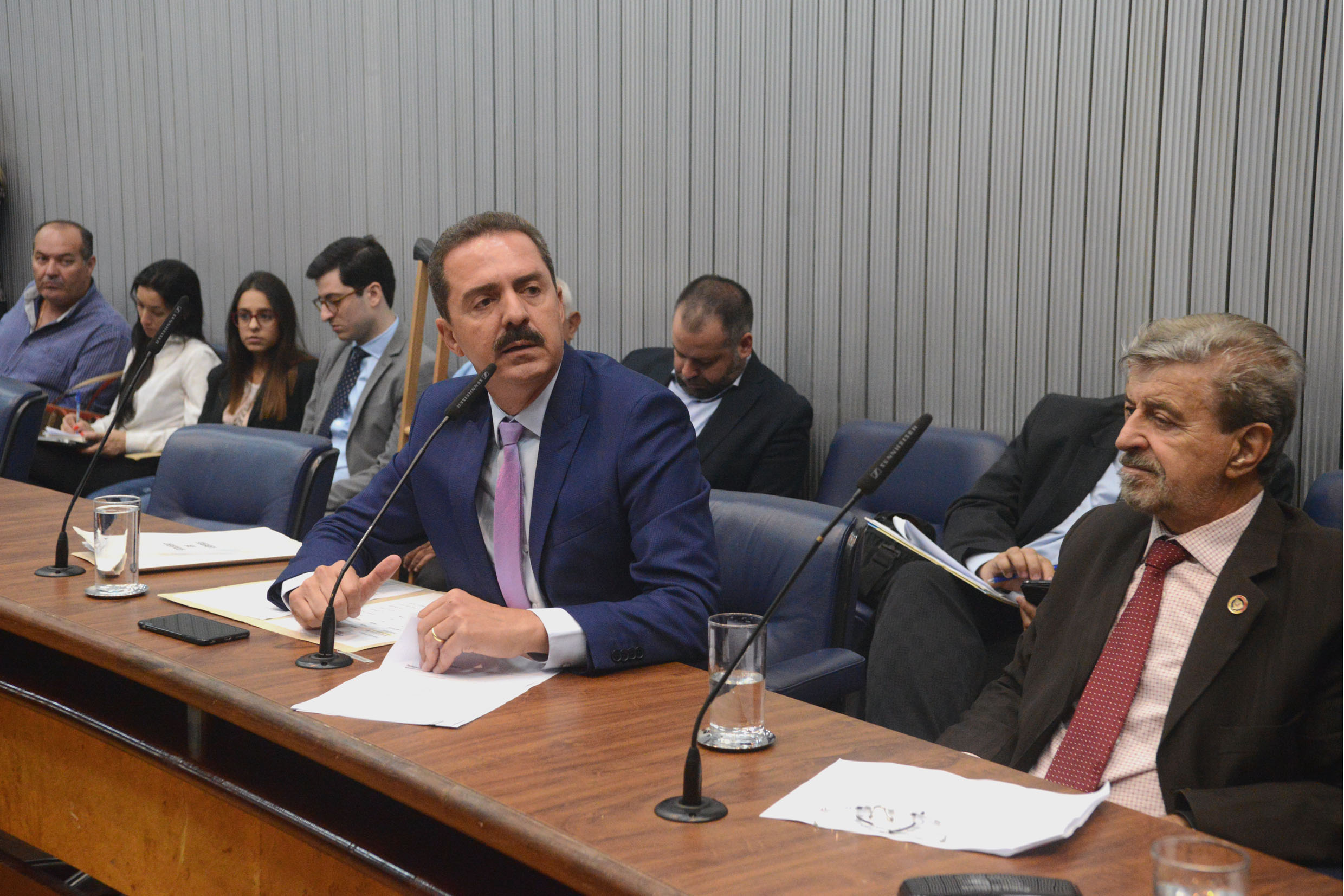 Parlamentares na comissão <a style='float:right' href='https://www3.al.sp.gov.br/repositorio/noticia/N-02-2019/fg229845.jpg' target=_blank><img src='/_img/material-file-download-white.png' width='14px' alt='Clique para baixar a imagem'></a>
