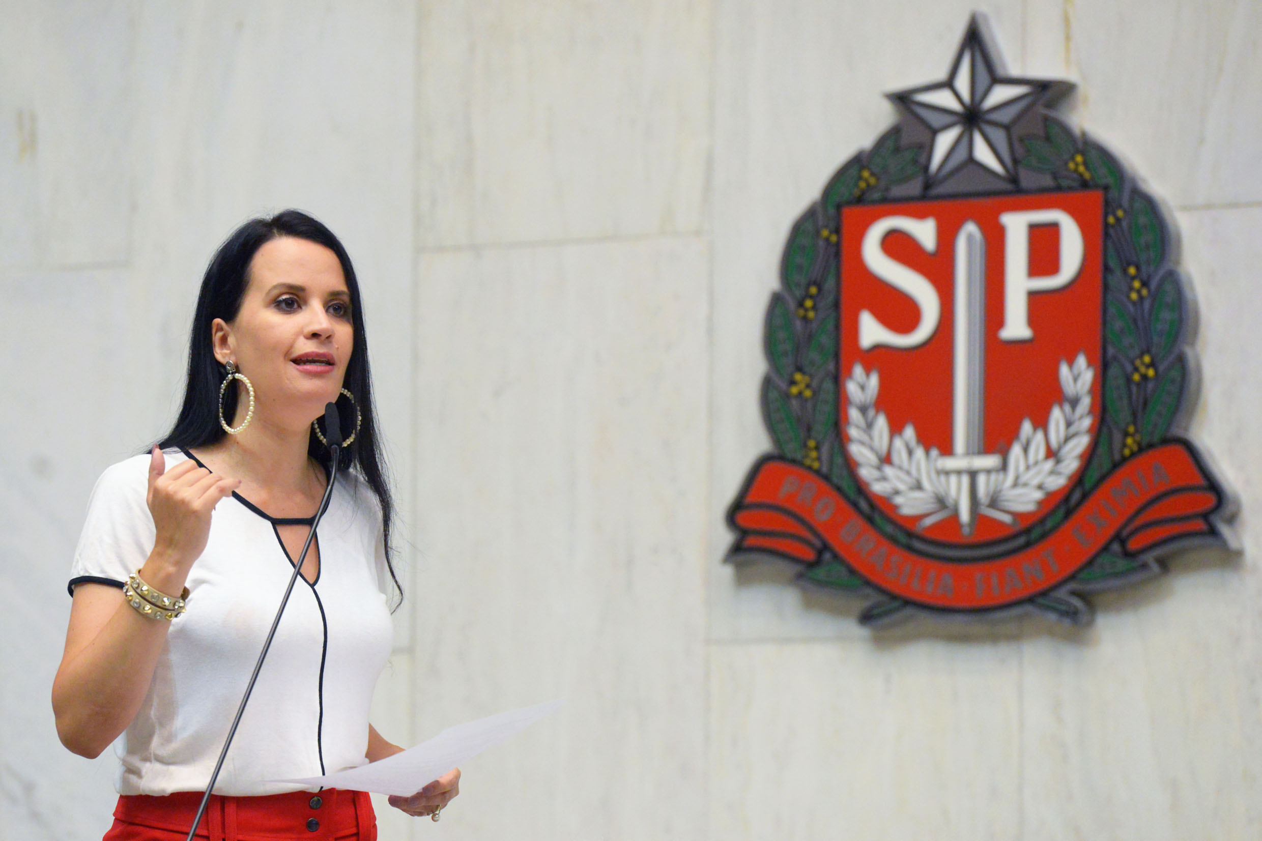 Leticia Aguiar<a style='float:right' href='https://www3.al.sp.gov.br/repositorio/noticia/N-02-2021/fg260981.jpg' target=_blank><img src='/_img/material-file-download-white.png' width='14px' alt='Clique para baixar a imagem'></a>