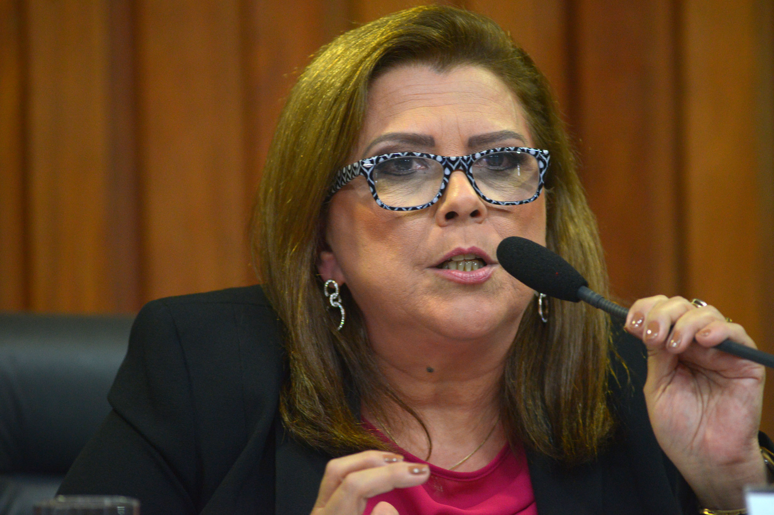 Cristiane Gomes<a style='float:right' href='https://www3.al.sp.gov.br/repositorio/noticia/N-03-2018/fg219322.jpg' target=_blank><img src='/_img/material-file-download-white.png' width='14px' alt='Clique para baixar a imagem'></a>