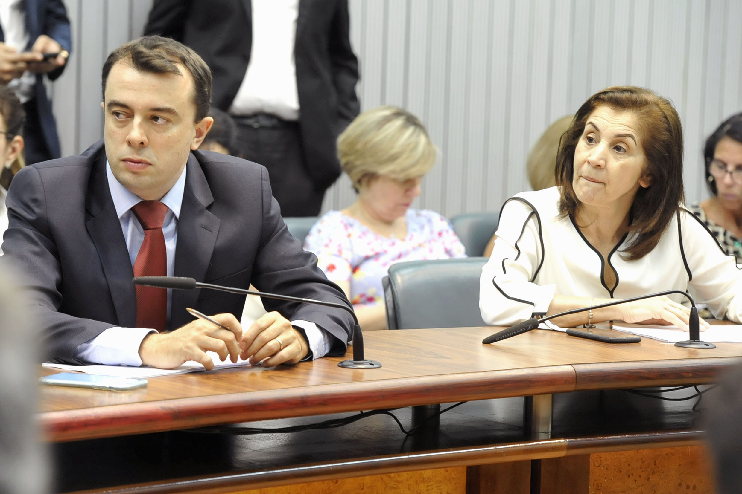 Parlamentares na comissão<a style='float:right' href='https://www3.al.sp.gov.br/repositorio/noticia/N-03-2019/fg231000.jpg' target=_blank><img src='/_img/material-file-download-white.png' width='14px' alt='Clique para baixar a imagem'></a>