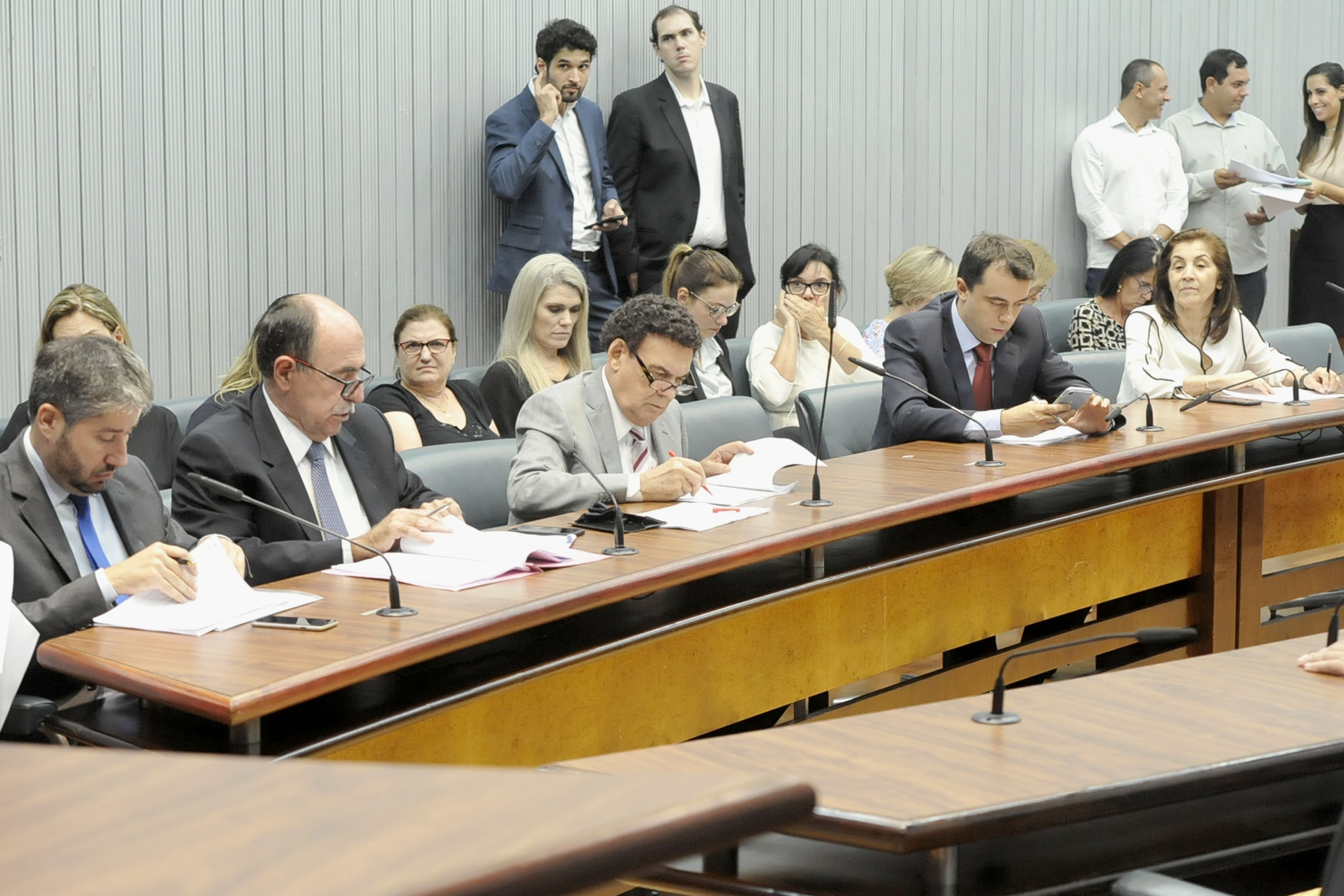 Parlamentares na comissão<a style='float:right' href='https://www3.al.sp.gov.br/repositorio/noticia/N-03-2019/fg231001.jpg' target=_blank><img src='/_img/material-file-download-white.png' width='14px' alt='Clique para baixar a imagem'></a>