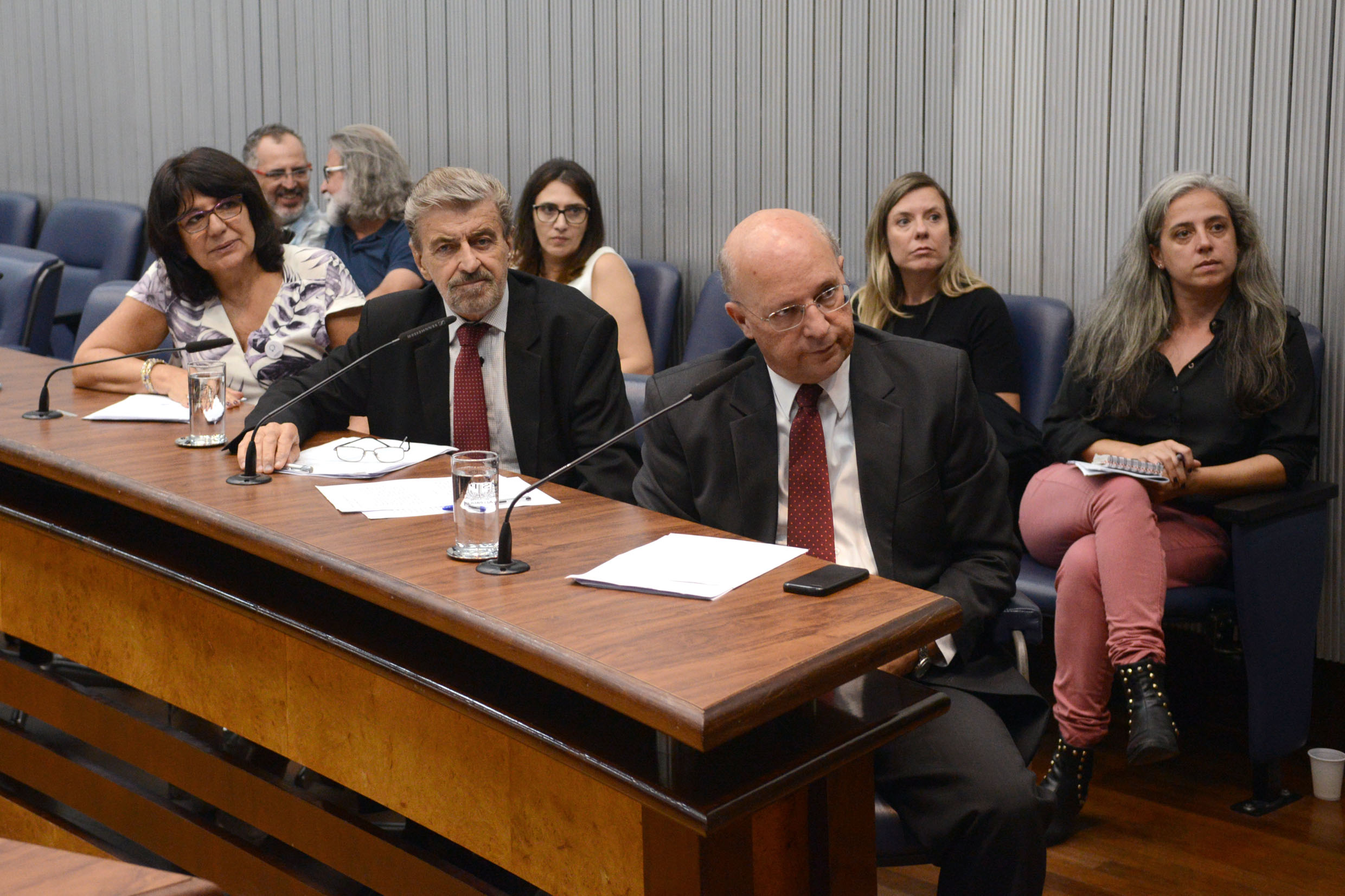 Parlamentares na comissão<a style='float:right' href='https://www3.al.sp.gov.br/repositorio/noticia/N-03-2019/fg231013.jpg' target=_blank><img src='/_img/material-file-download-white.png' width='14px' alt='Clique para baixar a imagem'></a>