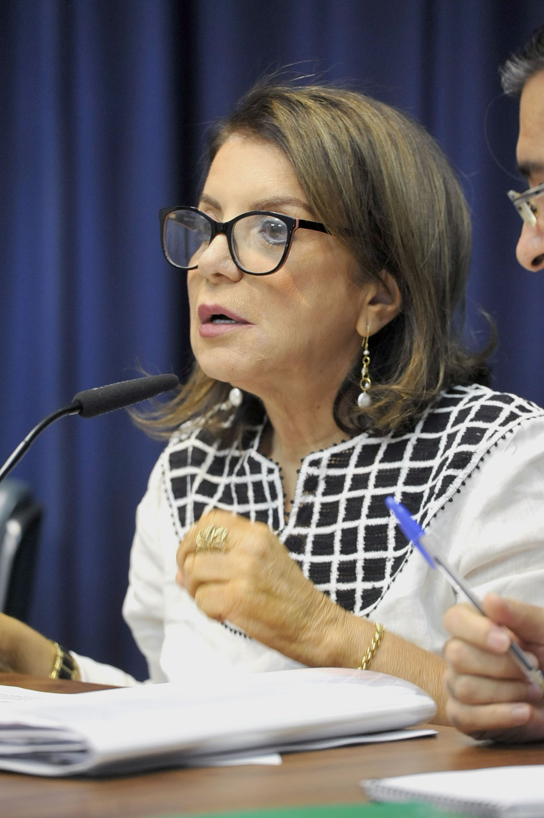 Professora Bebel <a style='float:right' href='https://www3.al.sp.gov.br/repositorio/noticia/N-04-2019/fg233414.jpg' target=_blank><img src='/_img/material-file-download-white.png' width='14px' alt='Clique para baixar a imagem'></a>