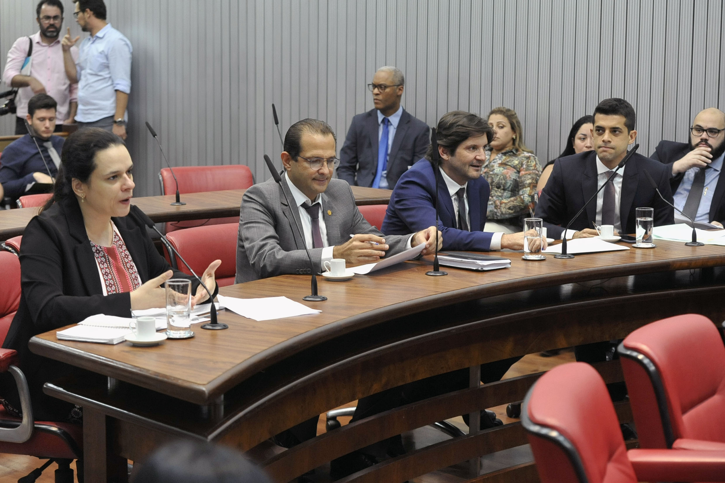 Parlamentares na comissão<a style='float:right' href='https://www3.al.sp.gov.br/repositorio/noticia/N-04-2019/fg233431.jpg' target=_blank><img src='/_img/material-file-download-white.png' width='14px' alt='Clique para baixar a imagem'></a>