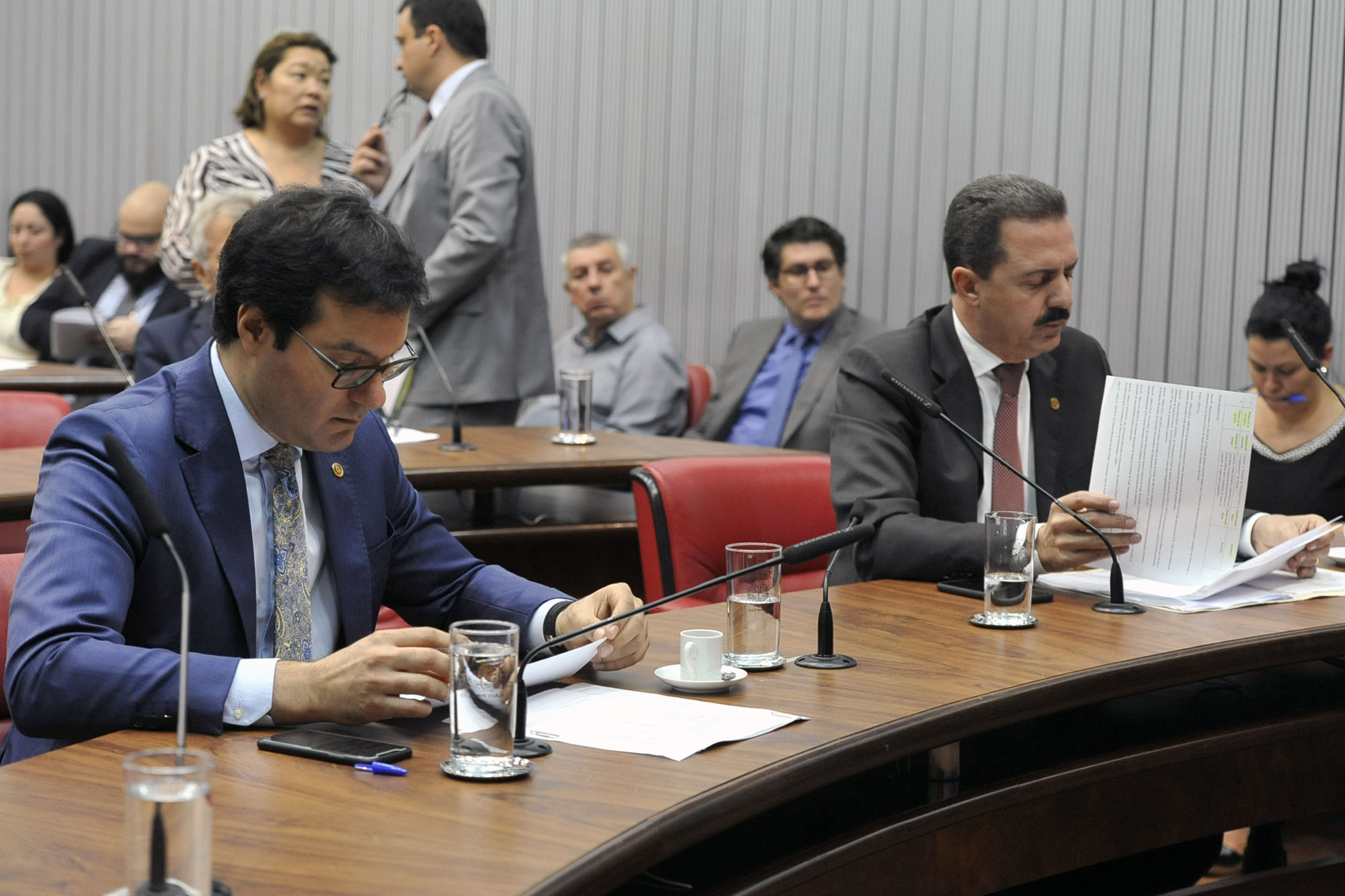 Parlamentares na comissão<a style='float:right' href='https://www3.al.sp.gov.br/repositorio/noticia/N-04-2019/fg233432.jpg' target=_blank><img src='/_img/material-file-download-white.png' width='14px' alt='Clique para baixar a imagem'></a>