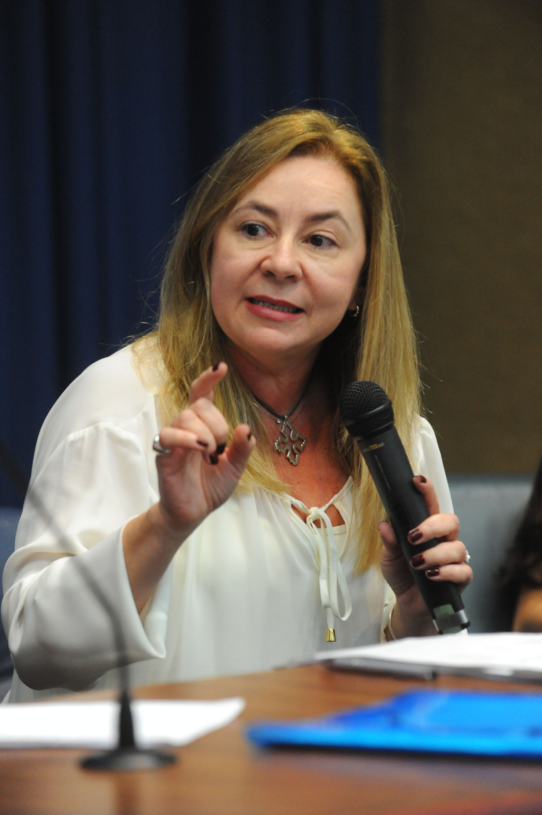 Ednéia Marques<a style='float:right' href='https://www3.al.sp.gov.br/repositorio/noticia/N-05-2018/fg222266.jpg' target=_blank><img src='/_img/material-file-download-white.png' width='14px' alt='Clique para baixar a imagem'></a>
