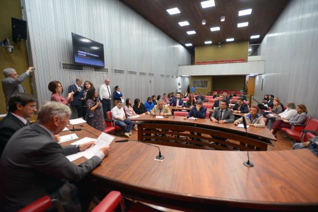 Comissão  de Educação e Cultura