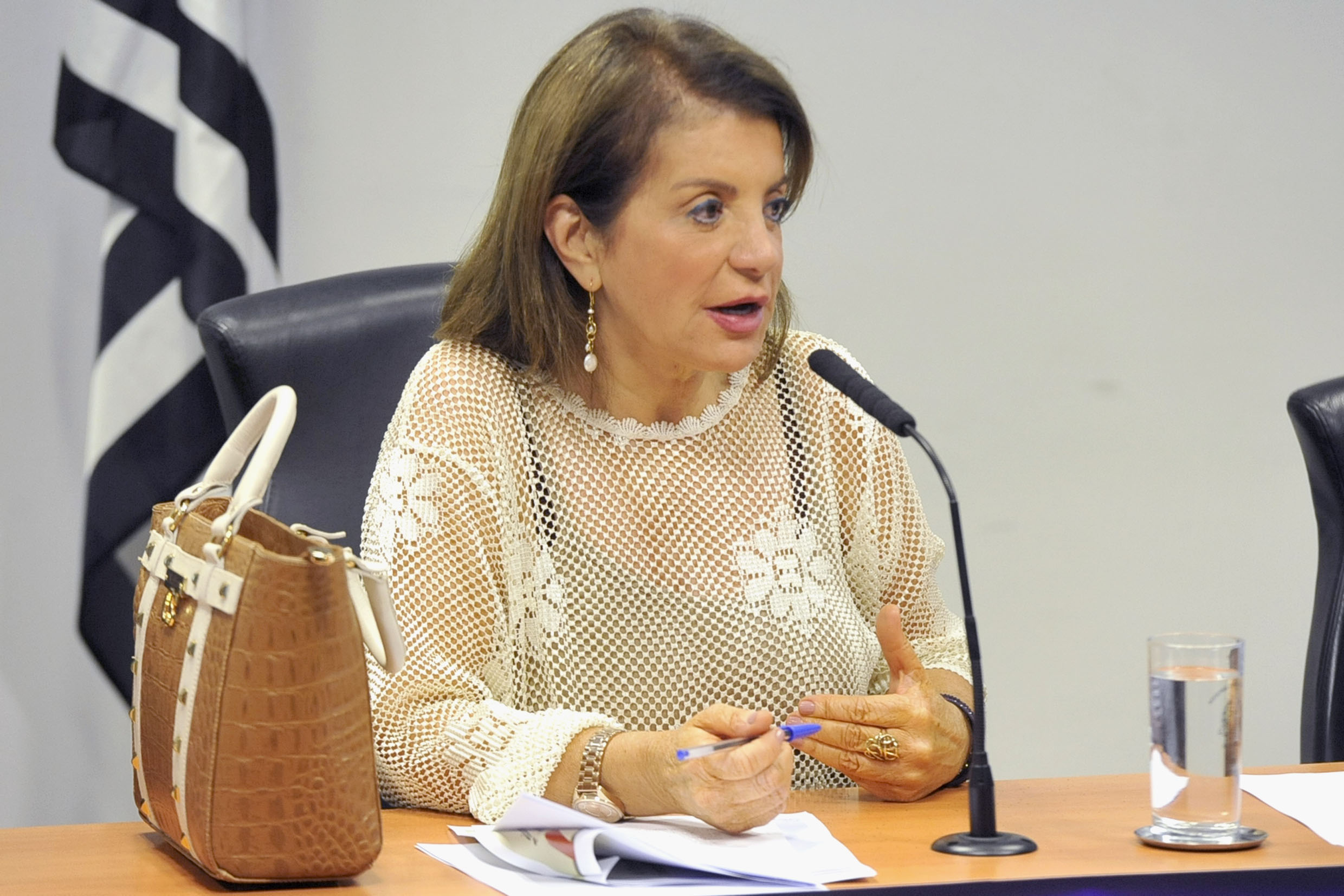 Professora Bebel<a style='float:right' href='https://www3.al.sp.gov.br/repositorio/noticia/N-05-2019/fg233594.jpg' target=_blank><img src='/_img/material-file-download-white.png' width='14px' alt='Clique para baixar a imagem'></a>