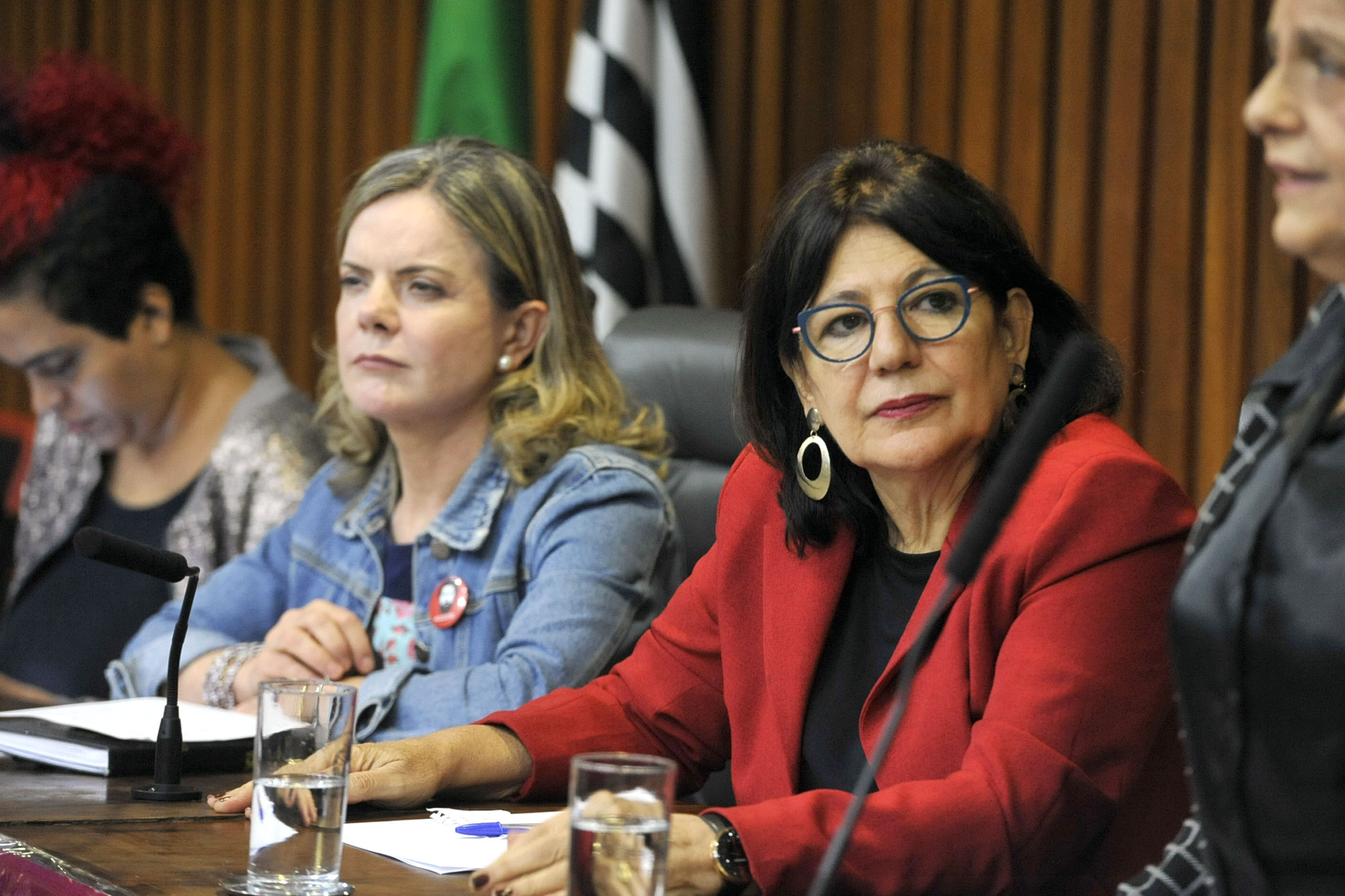 Gleisi Hoffmann e Beth Sahão<a style='float:right' href='https://www3.al.sp.gov.br/repositorio/noticia/N-05-2019/fg233870.jpg' target=_blank><img src='/_img/material-file-download-white.png' width='14px' alt='Clique para baixar a imagem'></a>