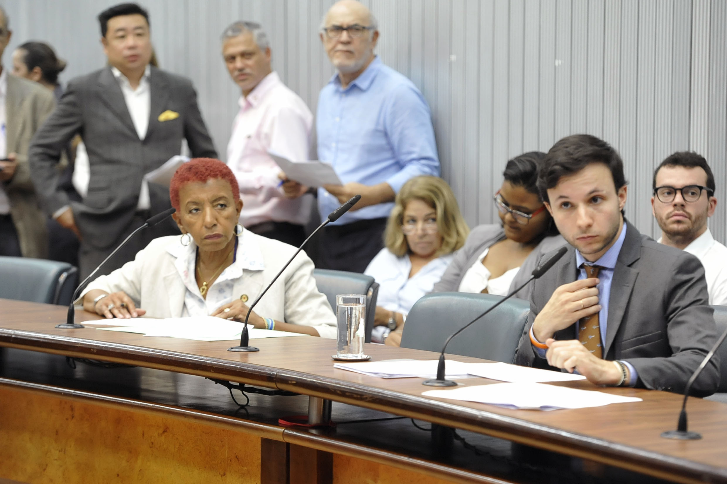 Parlamentares na comissão<a style='float:right' href='https://www3.al.sp.gov.br/repositorio/noticia/N-05-2019/fg234067.jpg' target=_blank><img src='/_img/material-file-download-white.png' width='14px' alt='Clique para baixar a imagem'></a>