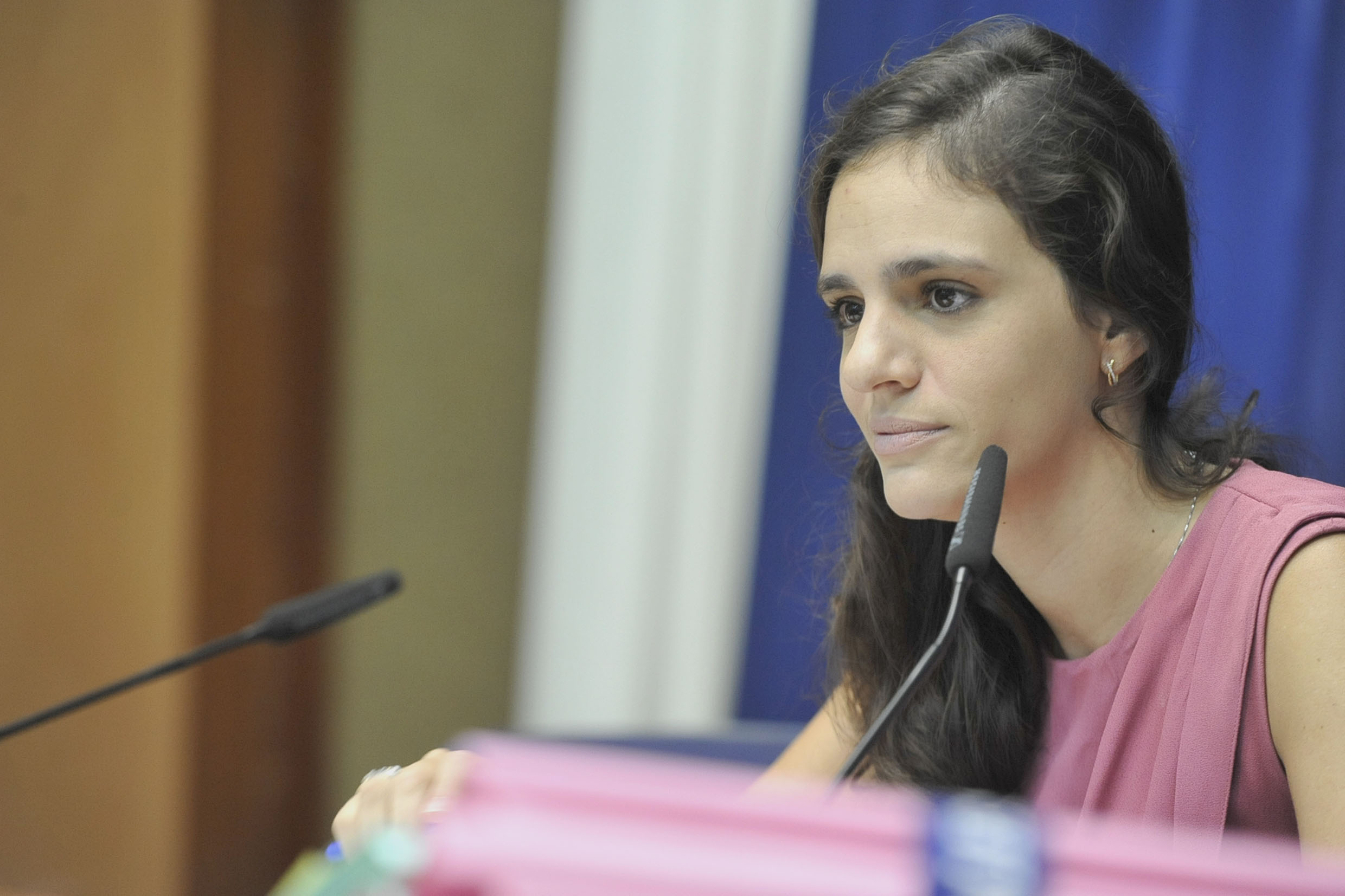 Marina Helou preside a comissão<a style='float:right' href='https://www3.al.sp.gov.br/repositorio/noticia/N-05-2019/fg234185.jpg' target=_blank><img src='/_img/material-file-download-white.png' width='14px' alt='Clique para baixar a imagem'></a>