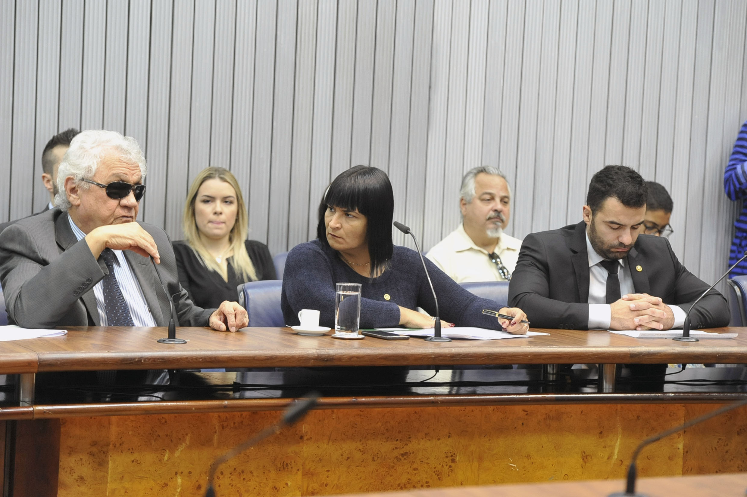 Parlamentares na comissão<a style='float:right' href='https://www3.al.sp.gov.br/repositorio/noticia/N-05-2019/fg234427.jpg' target=_blank><img src='/_img/material-file-download-white.png' width='14px' alt='Clique para baixar a imagem'></a>