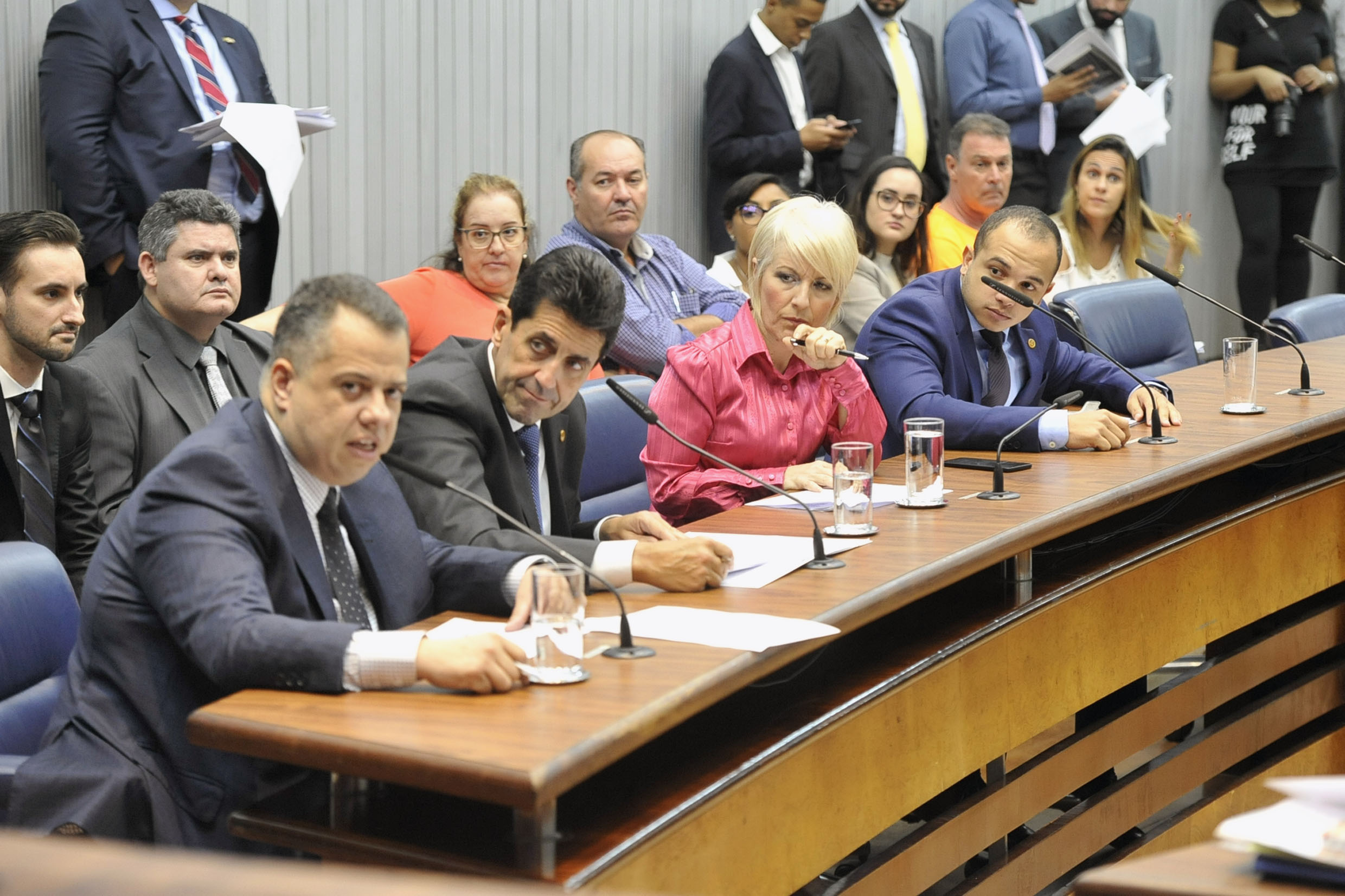 Parlamentares na comissão<a style='float:right' href='https://www3.al.sp.gov.br/repositorio/noticia/N-05-2019/fg234429.jpg' target=_blank><img src='/_img/material-file-download-white.png' width='14px' alt='Clique para baixar a imagem'></a>