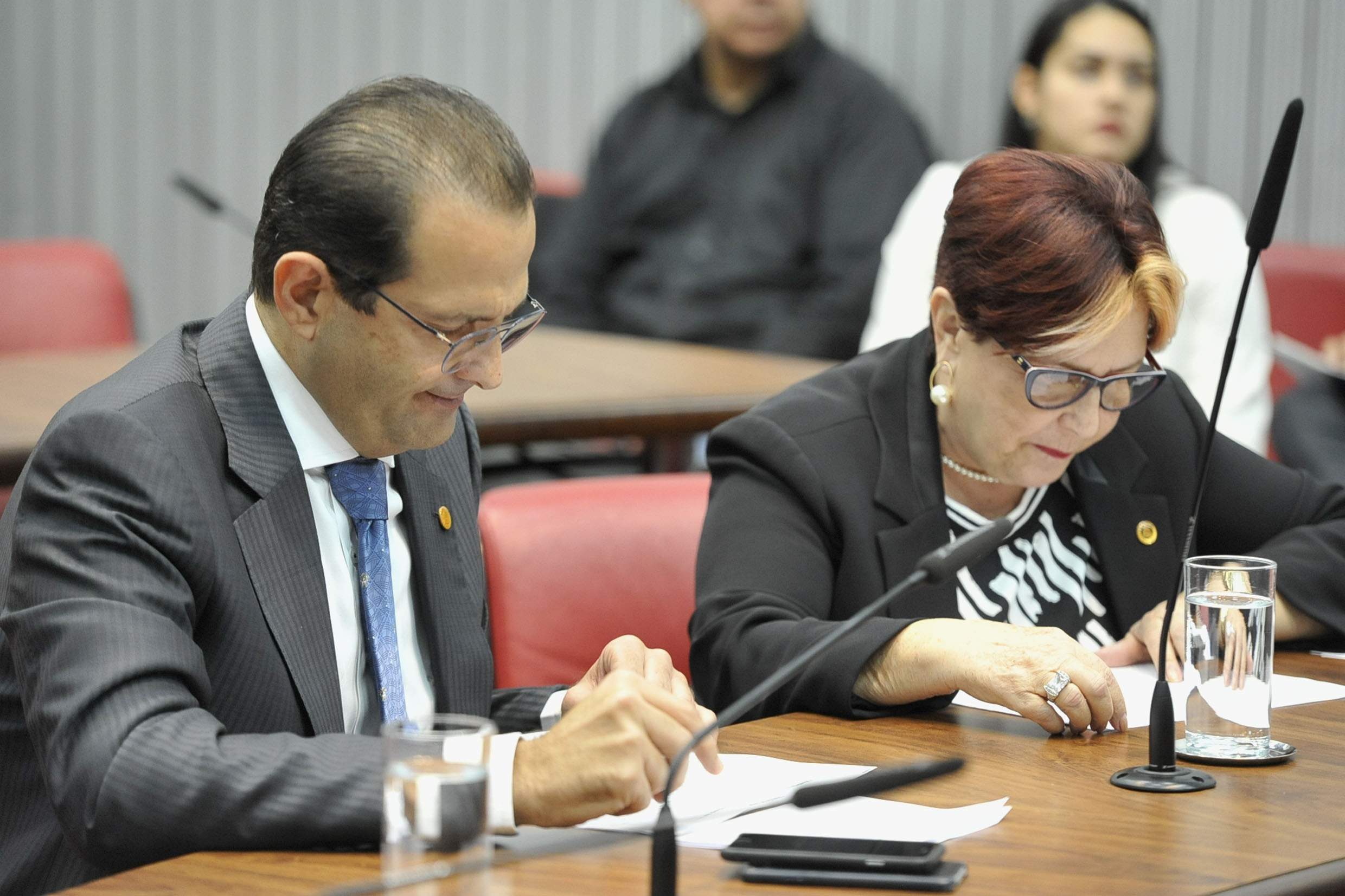 Parlamentares na comissão<a style='float:right' href='https://www3.al.sp.gov.br/repositorio/noticia/N-05-2019/fg234441.jpg' target=_blank><img src='/_img/material-file-download-white.png' width='14px' alt='Clique para baixar a imagem'></a>