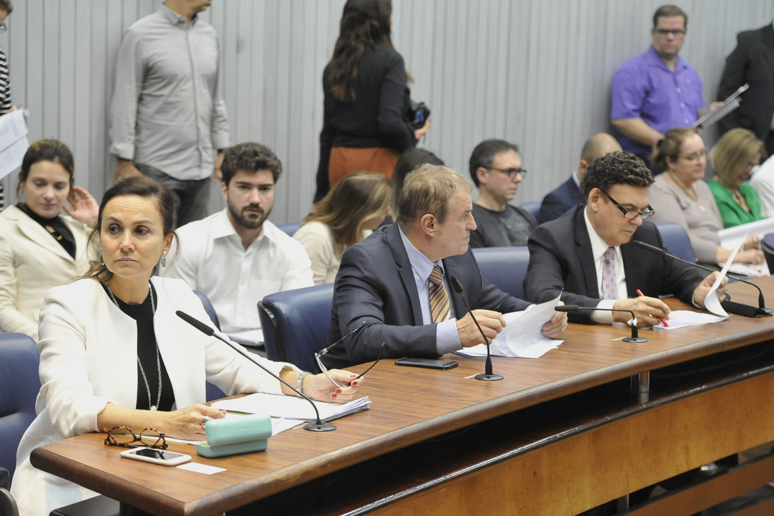 Parlamentares na comissão<a style='float:right' href='https://www3.al.sp.gov.br/repositorio/noticia/N-05-2019/fg234548.jpg' target=_blank><img src='/_img/material-file-download-white.png' width='14px' alt='Clique para baixar a imagem'></a>