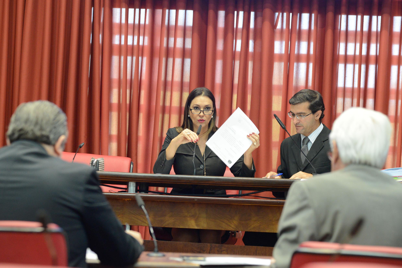Rita Passos presidente da comissão de Educação e Cultura <a style='float:right' href='https://www3.al.sp.gov.br/repositorio/noticia/N-06-2015/fg171485.jpg' target=_blank><img src='/_img/material-file-download-white.png' width='14px' alt='Clique para baixar a imagem'></a>