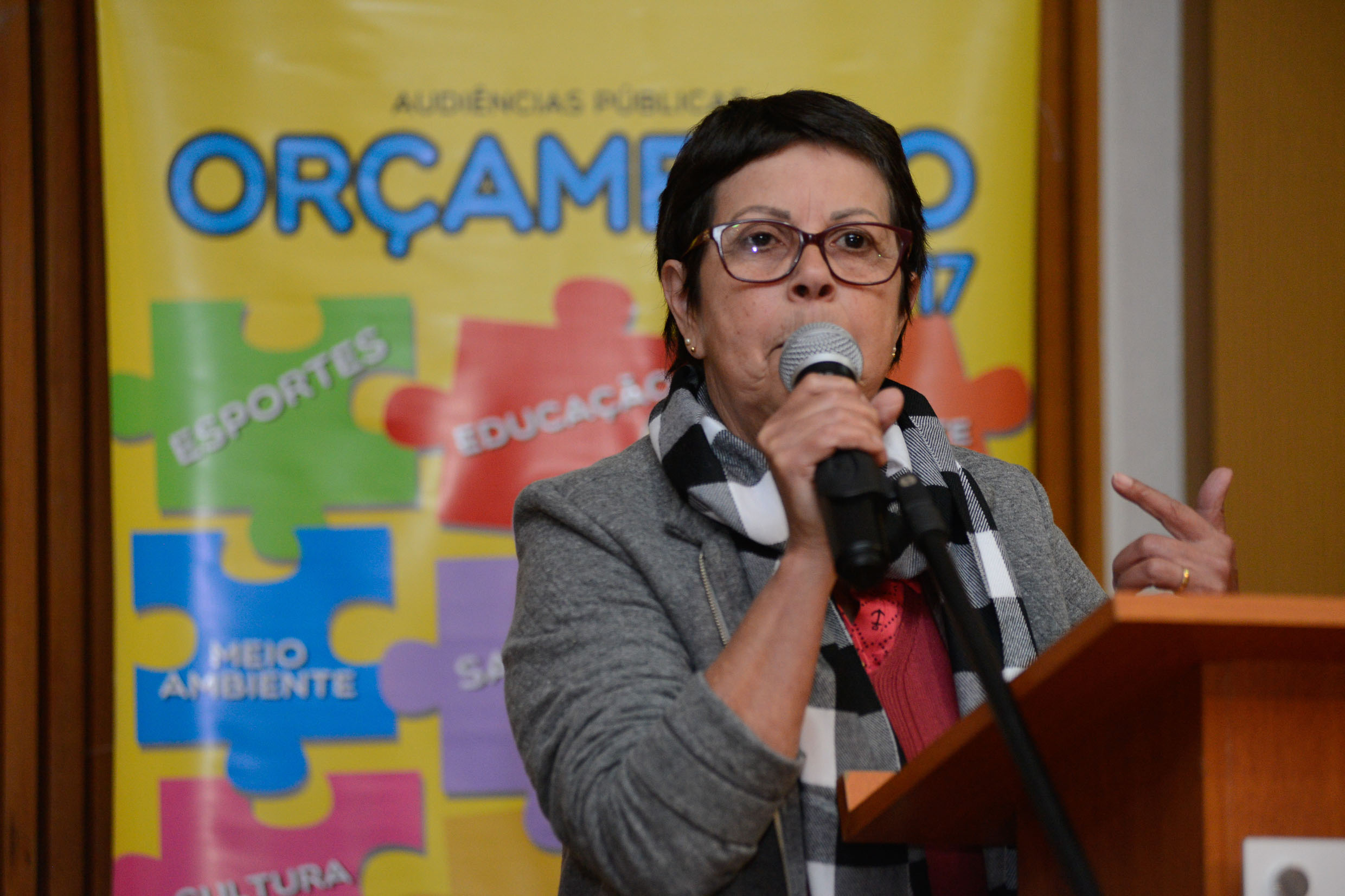 Ana do Carmo <a style='float:right' href='https://www3.al.sp.gov.br/repositorio/noticia/N-06-2016/fg191702.jpg' target=_blank><img src='/_img/material-file-download-white.png' width='14px' alt='Clique para baixar a imagem'></a>