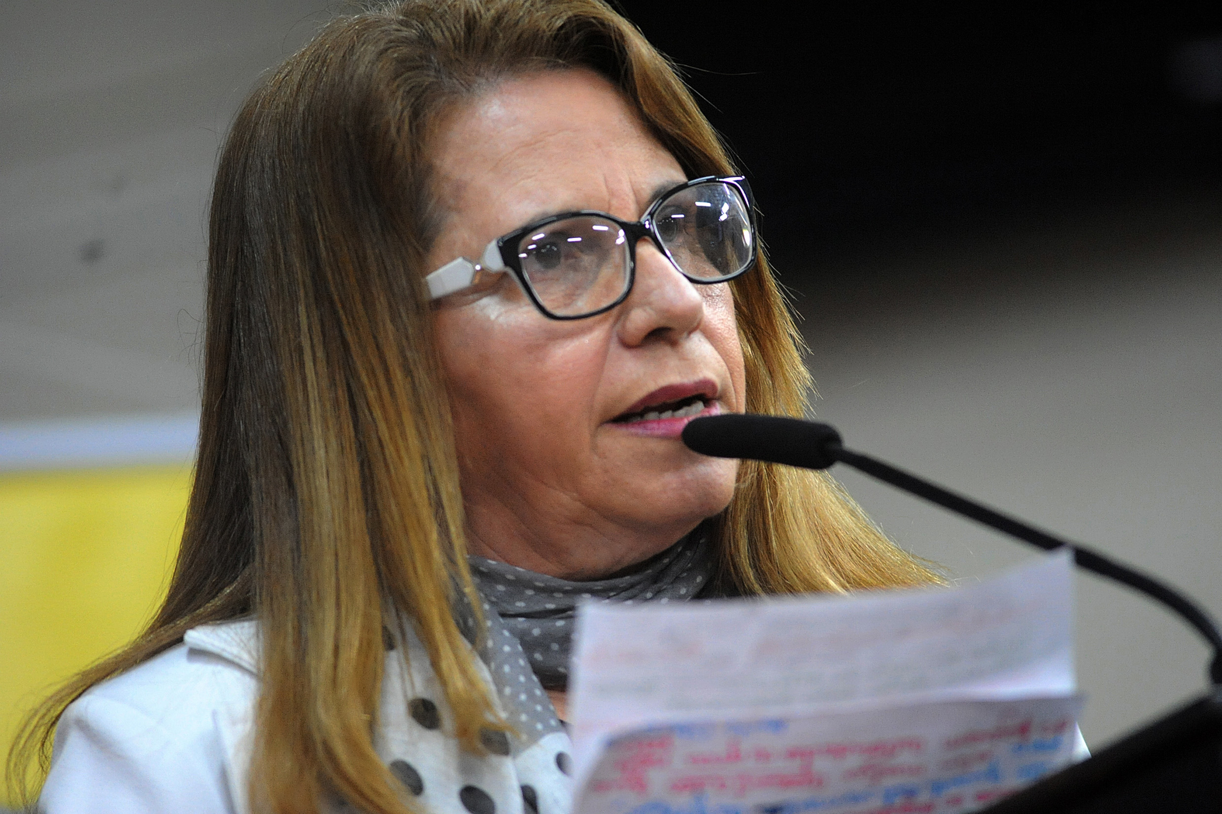 Maria Auxiliadora Murad<a style='float:right' href='https://www3.al.sp.gov.br/repositorio/noticia/N-06-2016/fg191984.jpg' target=_blank><img src='/_img/material-file-download-white.png' width='14px' alt='Clique para baixar a imagem'></a>