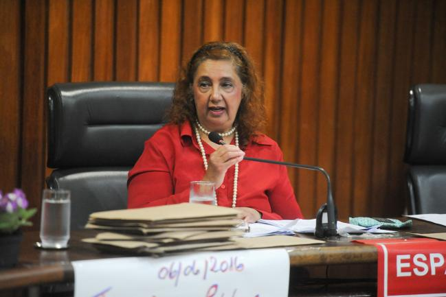 Jornalista Elisabeth Mariano, coordenadora do evento (Foto: Bruna Sampaio)