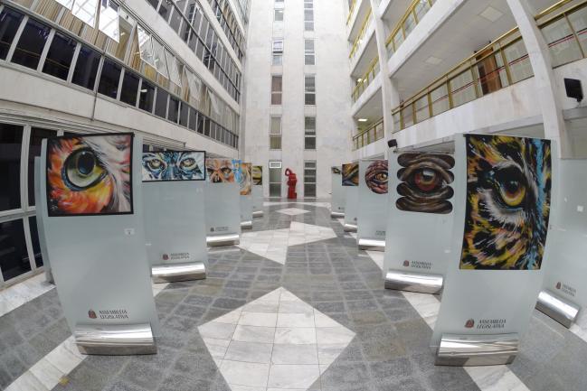 Obras do artista Bonga Mac expostas na Alesp