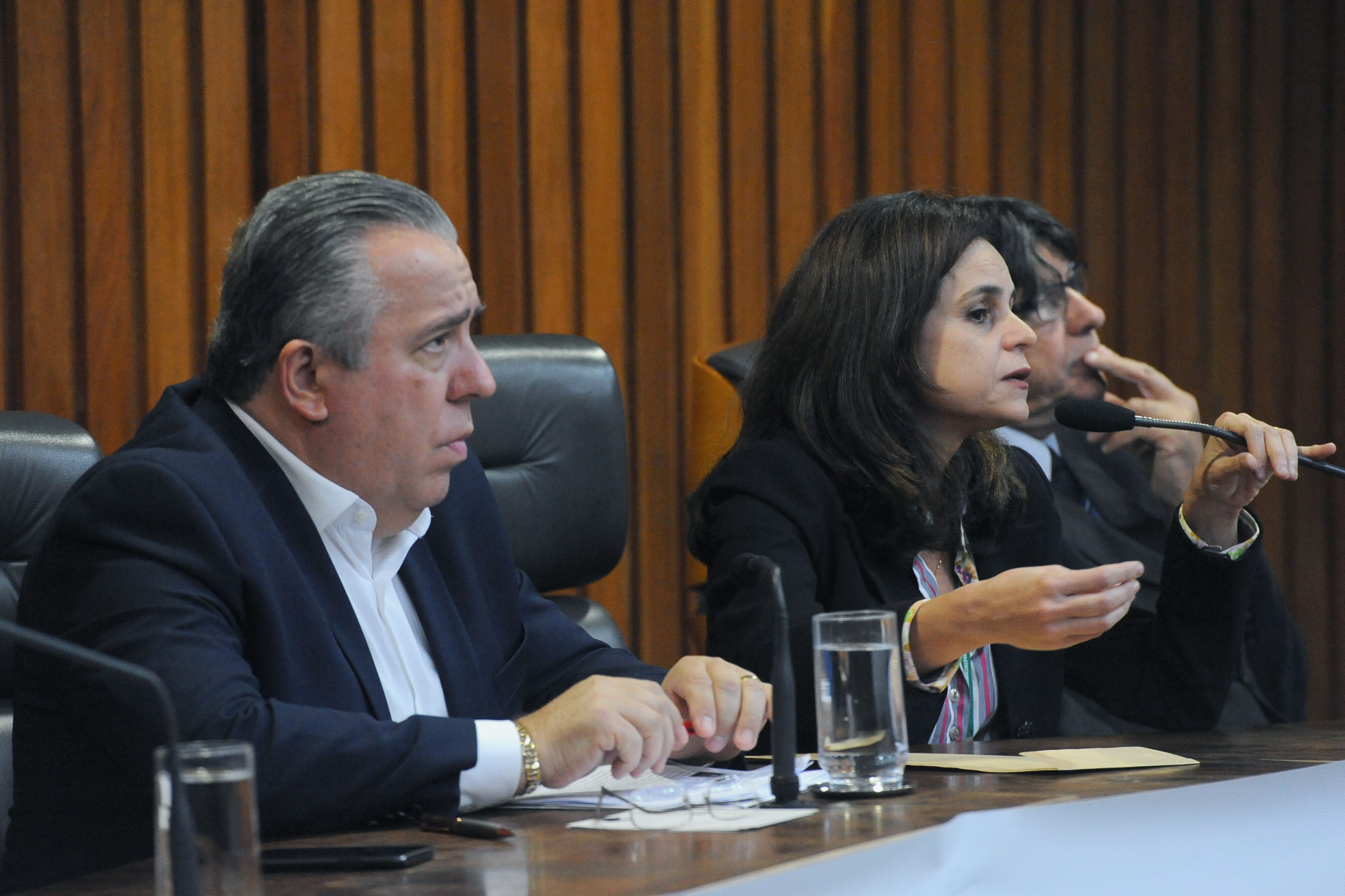 Adilson Rossi e Juliana do Amaral<a style='float:right' href='https://www3.al.sp.gov.br/repositorio/noticia/N-06-2018/fg224362.jpg' target=_blank><img src='/_img/material-file-download-white.png' width='14px' alt='Clique para baixar a imagem'></a>