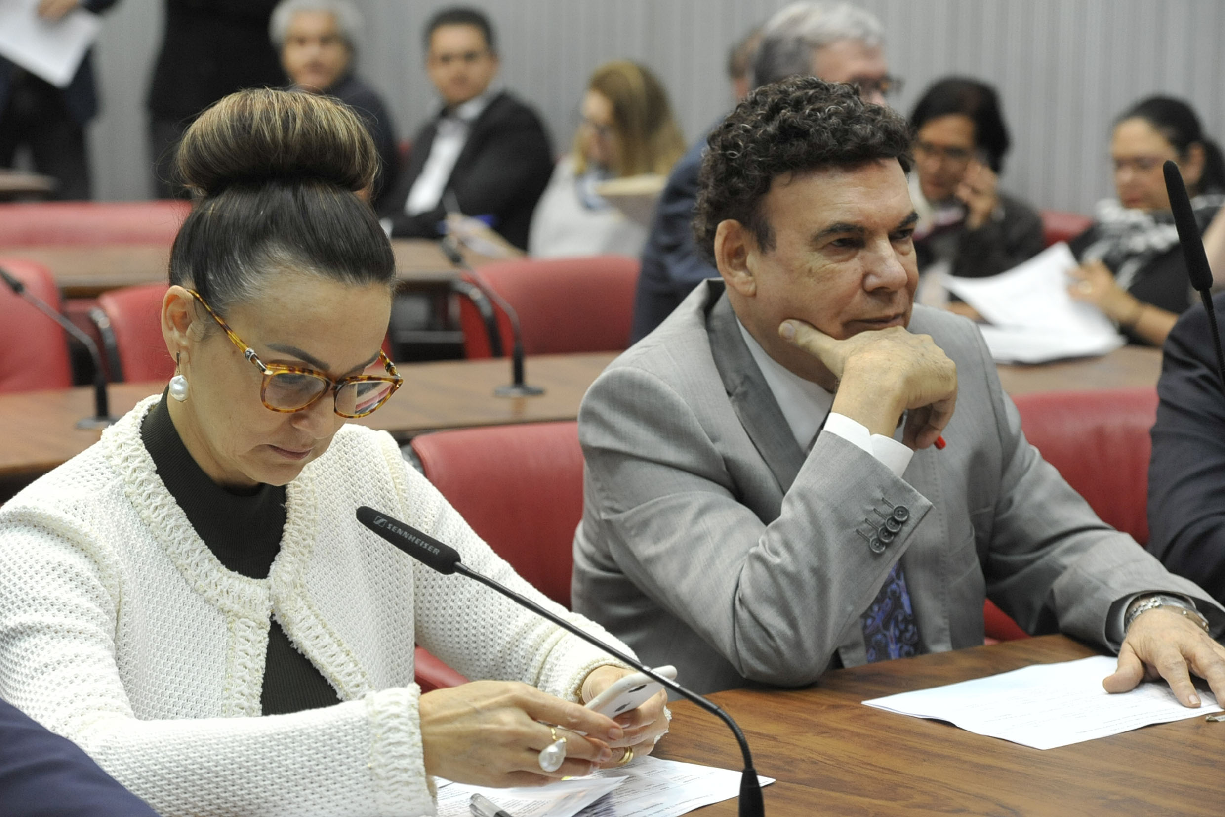 Analice Fernandes e Campos Machado<a style='float:right' href='https://www3.al.sp.gov.br/repositorio/noticia/N-06-2019/fg235743.jpg' target=_blank><img src='/_img/material-file-download-white.png' width='14px' alt='Clique para baixar a imagem'></a>