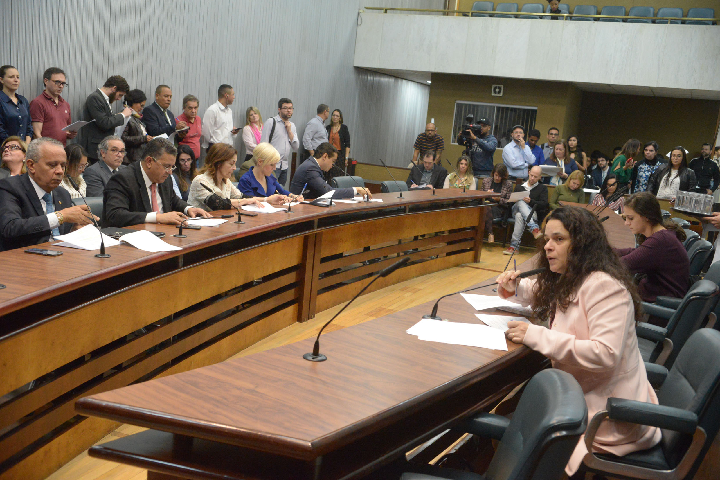 Parlamentares na comissão<a style='float:right' href='https://www3.al.sp.gov.br/repositorio/noticia/N-06-2019/fg235772.jpg' target=_blank><img src='/_img/material-file-download-white.png' width='14px' alt='Clique para baixar a imagem'></a>