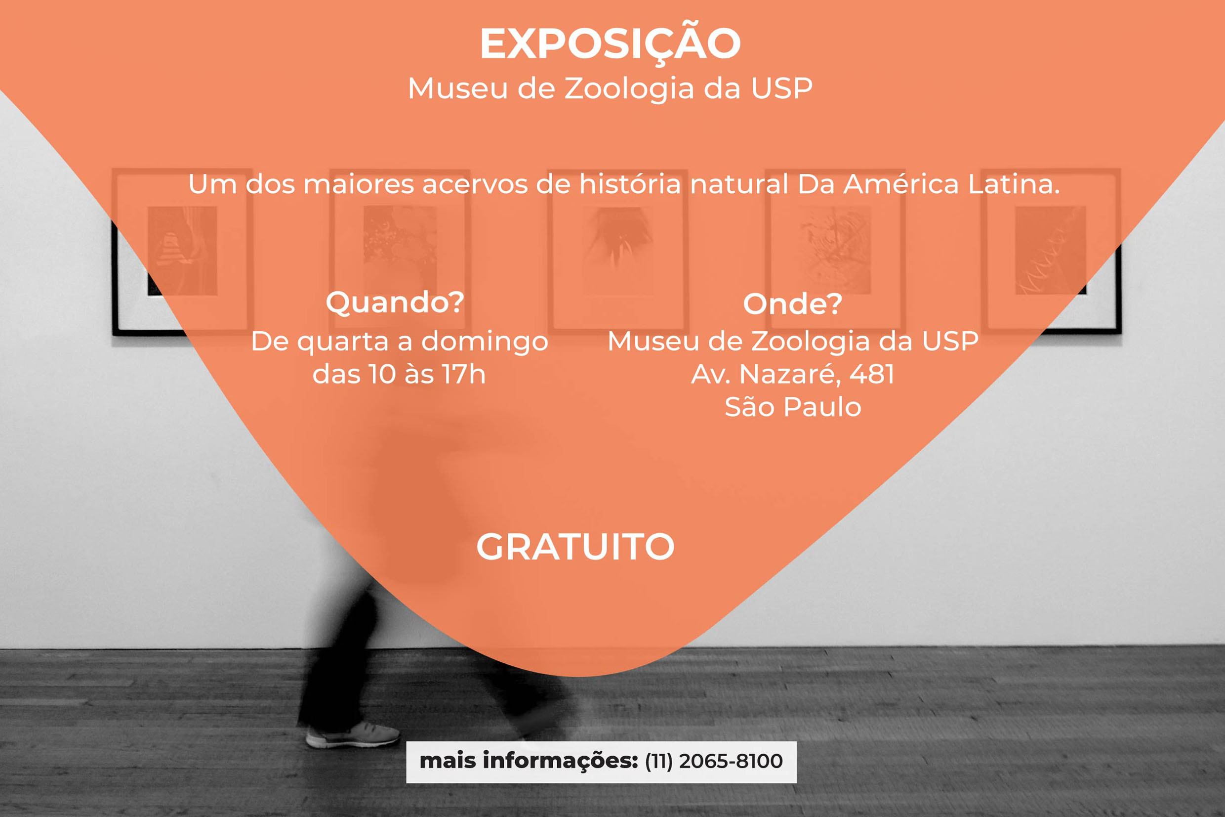 Agência Alesp<a style='float:right' href='https://www3.al.sp.gov.br/repositorio/noticia/N-07-2019/fg236867.jpg' target=_blank><img src='/_img/material-file-download-white.png' width='14px' alt='Clique para baixar a imagem'></a>