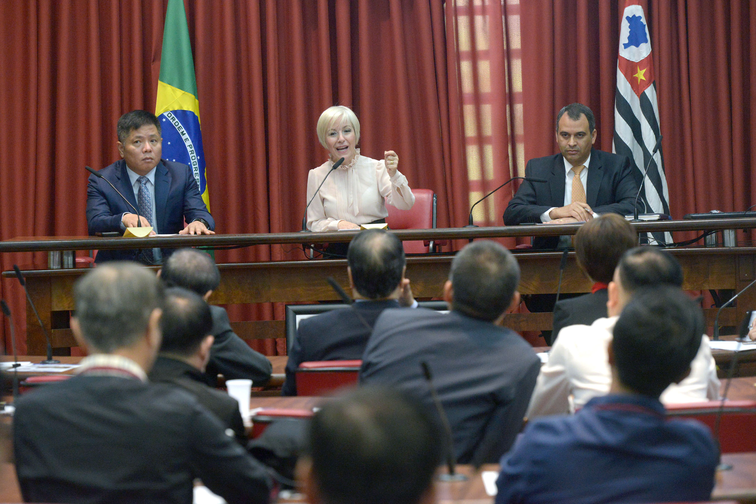 Zhang Wei, Dra. Damaris Moura e Markos Henrique<a style='float:right' href='https://www3.al.sp.gov.br/repositorio/noticia/N-08-2019/fg237192.jpg' target=_blank><img src='/_img/material-file-download-white.png' width='14px' alt='Clique para baixar a imagem'></a>