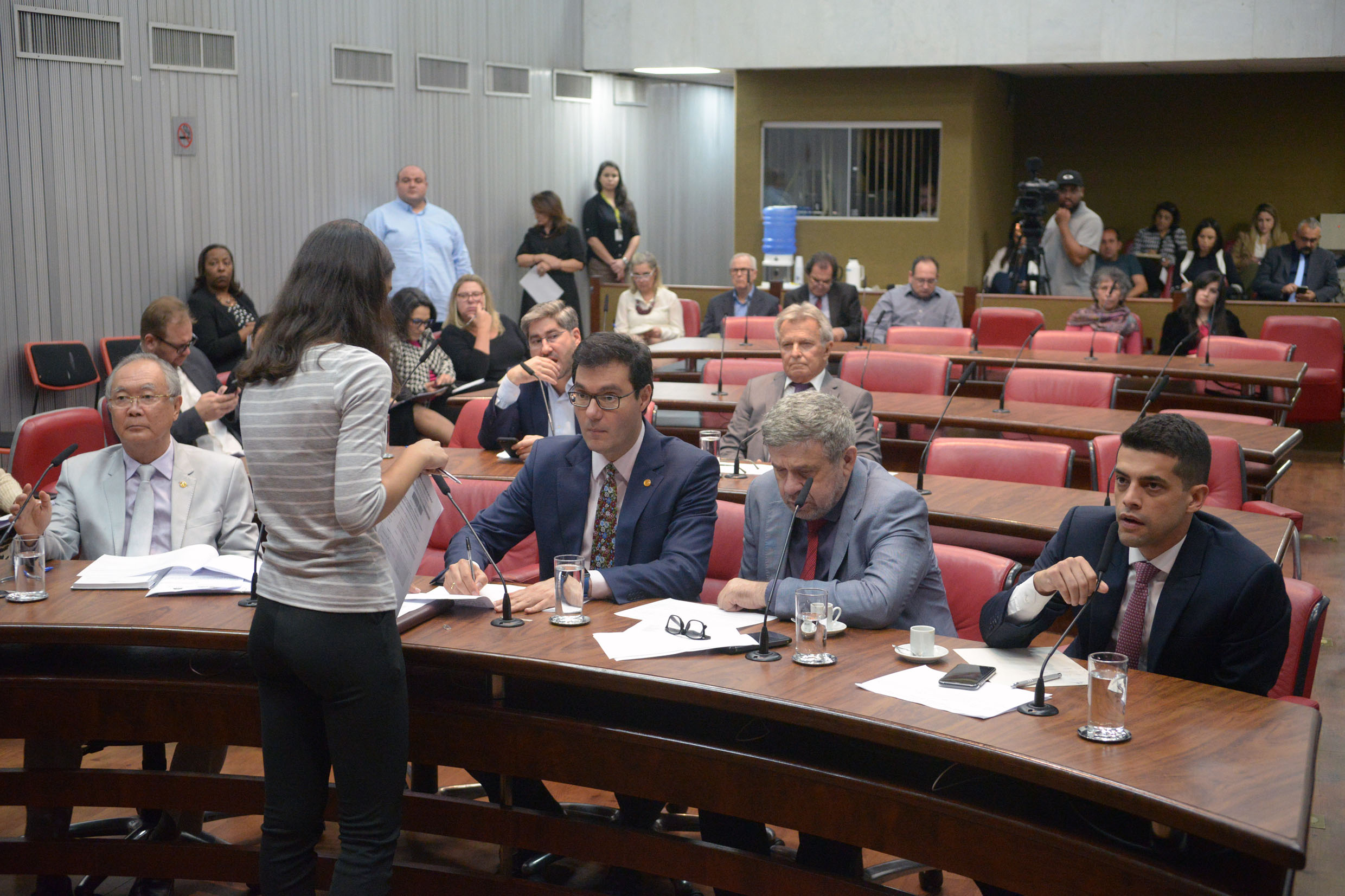Parlamentares na comissão<a style='float:right' href='https://www3.al.sp.gov.br/repositorio/noticia/N-08-2019/fg237902.jpg' target=_blank><img src='/_img/material-file-download-white.png' width='14px' alt='Clique para baixar a imagem'></a>