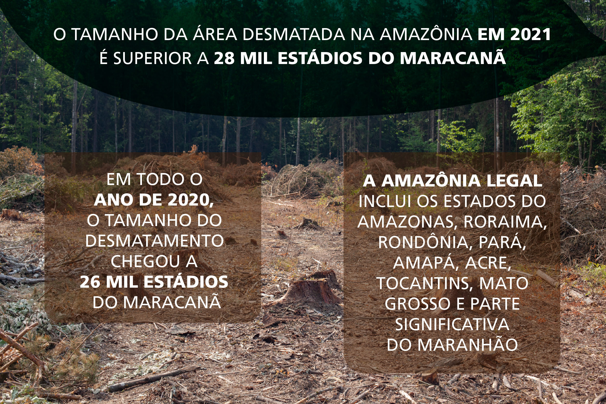 Infográfico<a style='float:right' href='https://www3.al.sp.gov.br/repositorio/noticia/N-09-2021/fg273401.jpg' target=_blank><img src='/_img/material-file-download-white.png' width='14px' alt='Clique para baixar a imagem'></a>