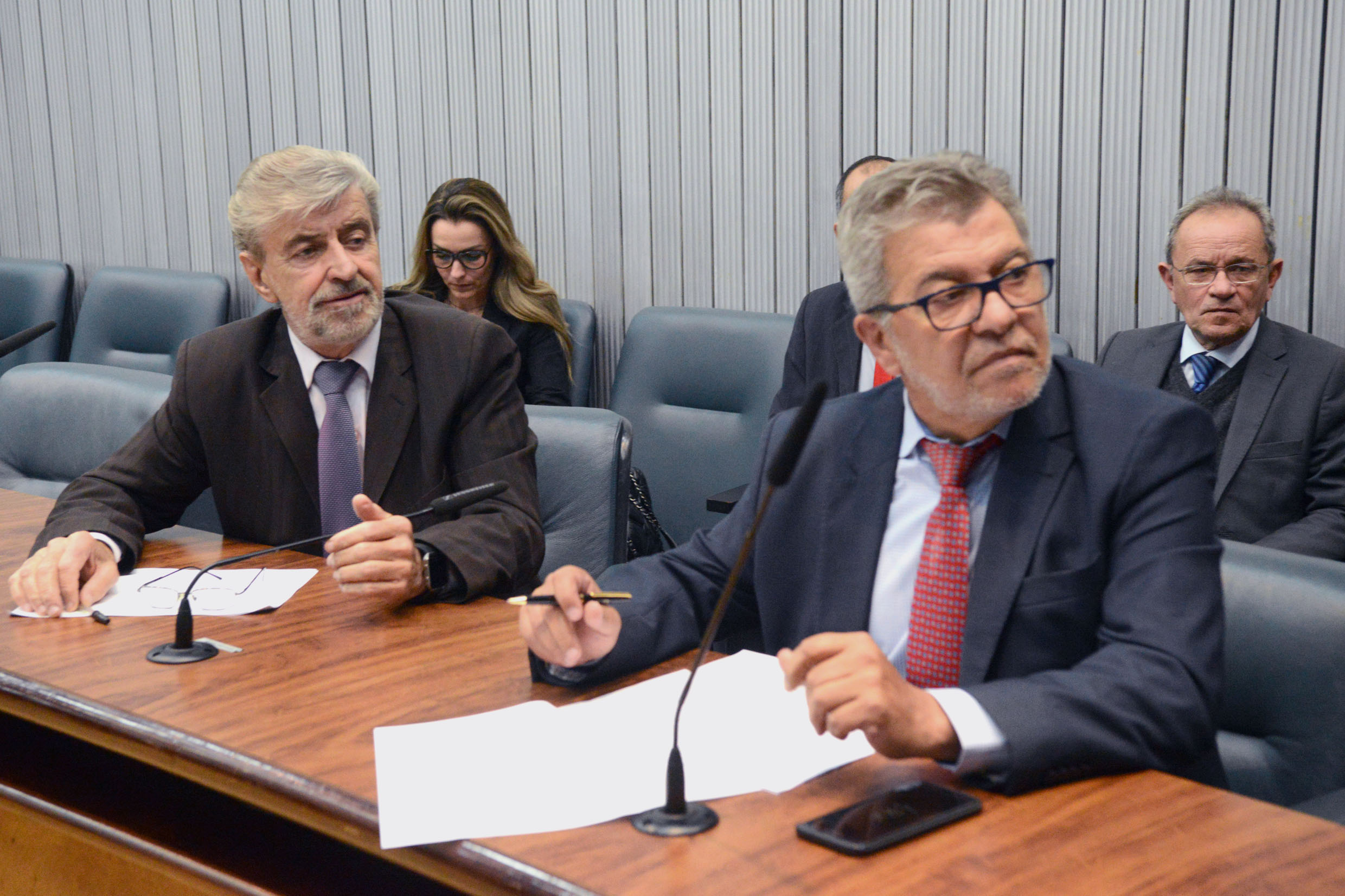 Parlamentares na comissão<a style='float:right' href='https://www3.al.sp.gov.br/repositorio/noticia/N-10-2018/fg227028.jpg' target=_blank><img src='/_img/material-file-download-white.png' width='14px' alt='Clique para baixar a imagem'></a>