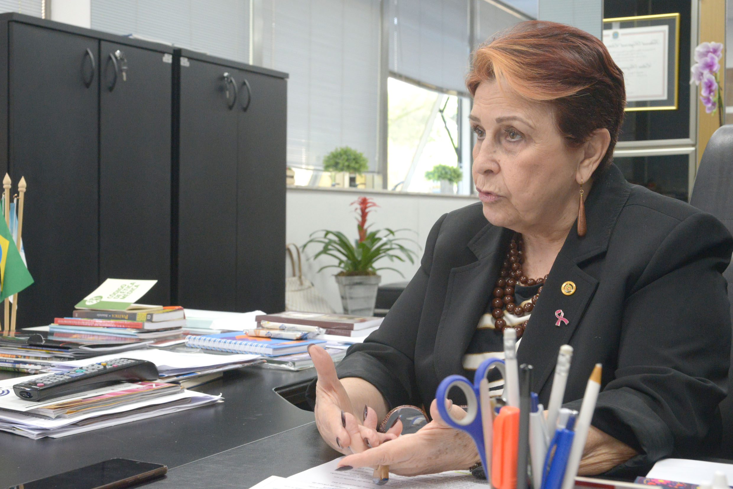 Edna Macedo<a style='float:right' href='https://www3.al.sp.gov.br/repositorio/noticia/N-10-2019/fg241646.jpg' target=_blank><img src='/_img/material-file-download-white.png' width='14px' alt='Clique para baixar a imagem'></a>