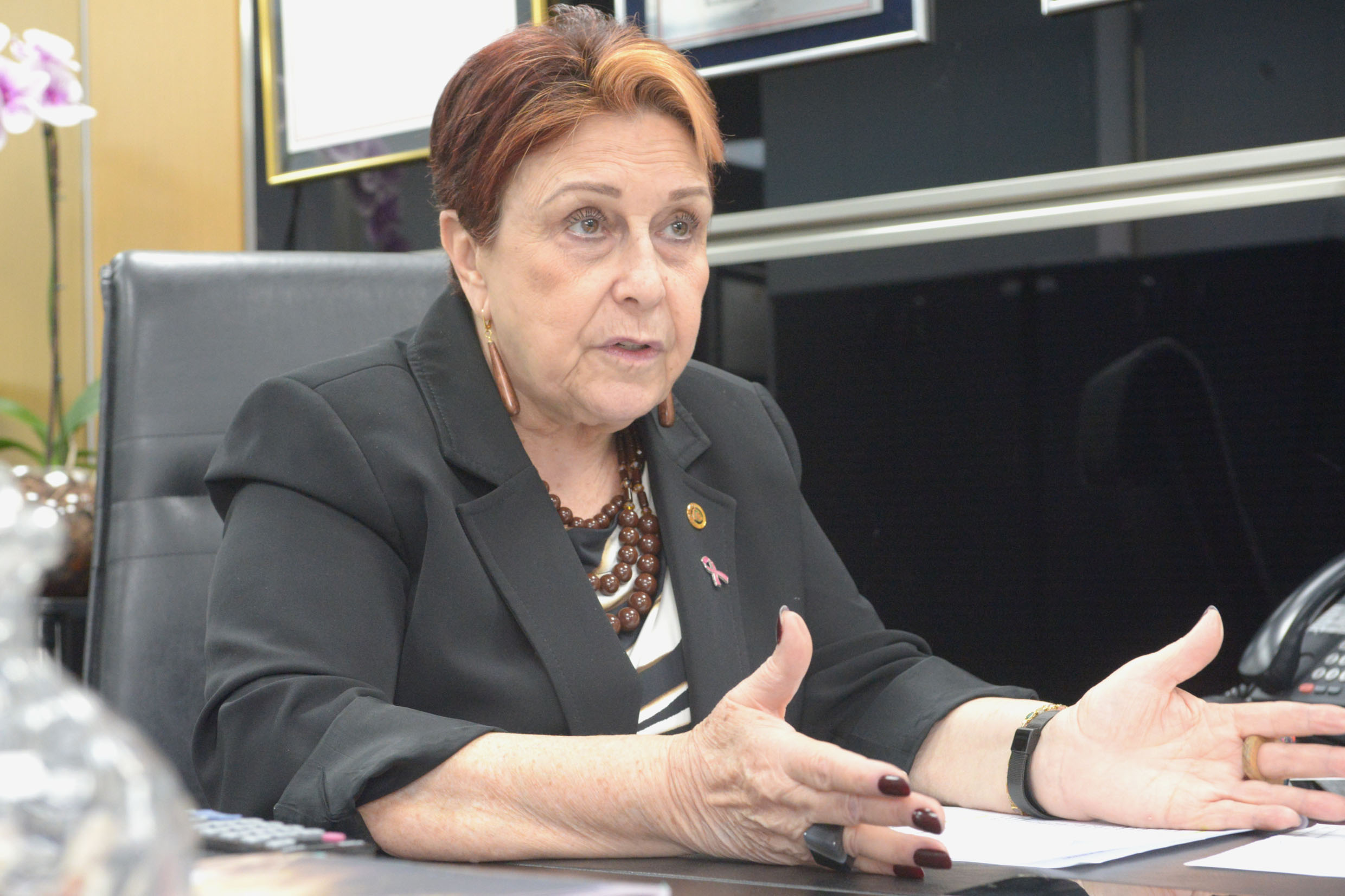 Edna Macedo<a style='float:right' href='https://www3.al.sp.gov.br/repositorio/noticia/N-10-2019/fg241648.jpg' target=_blank><img src='/_img/material-file-download-white.png' width='14px' alt='Clique para baixar a imagem'></a>