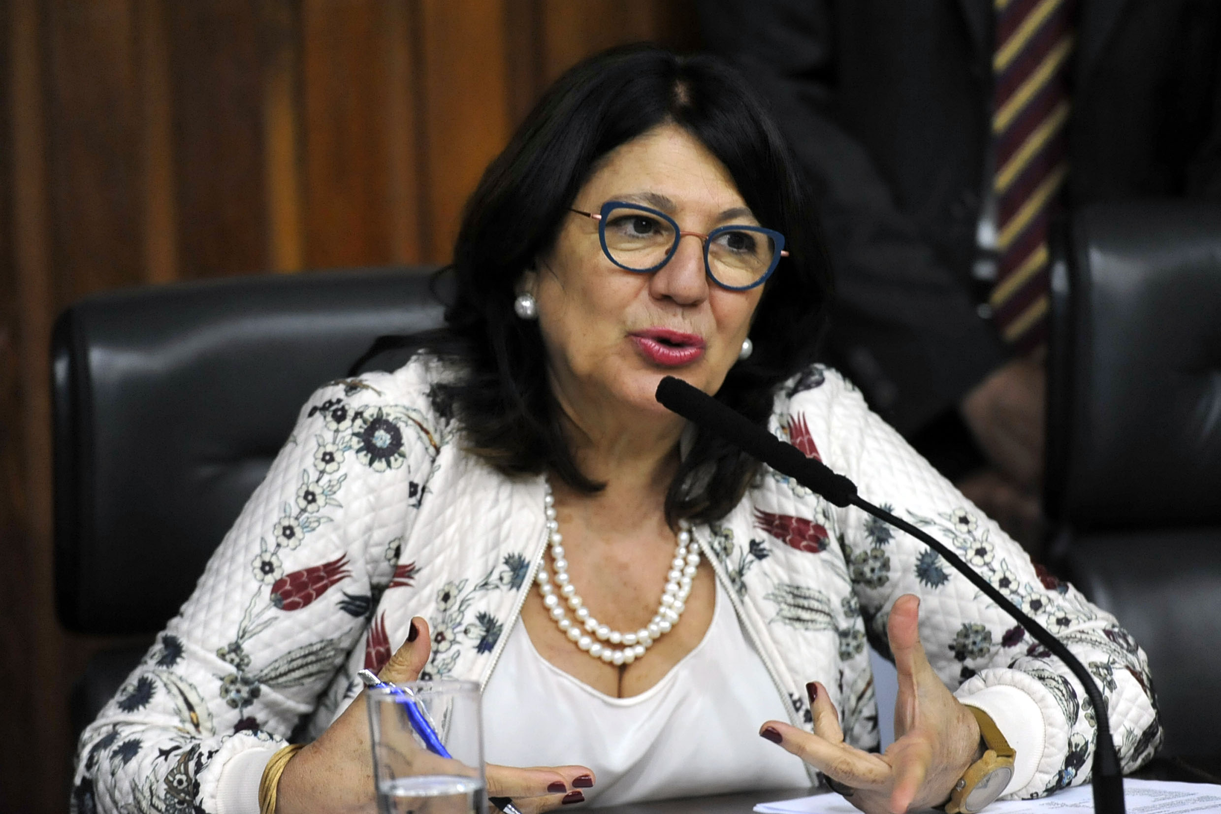 Beth Sahão preside a comissão<a style='float:right' href='https://www3.al.sp.gov.br/repositorio/noticia/N-10-2019/fg242413.jpg' target=_blank><img src='/_img/material-file-download-white.png' width='14px' alt='Clique para baixar a imagem'></a>