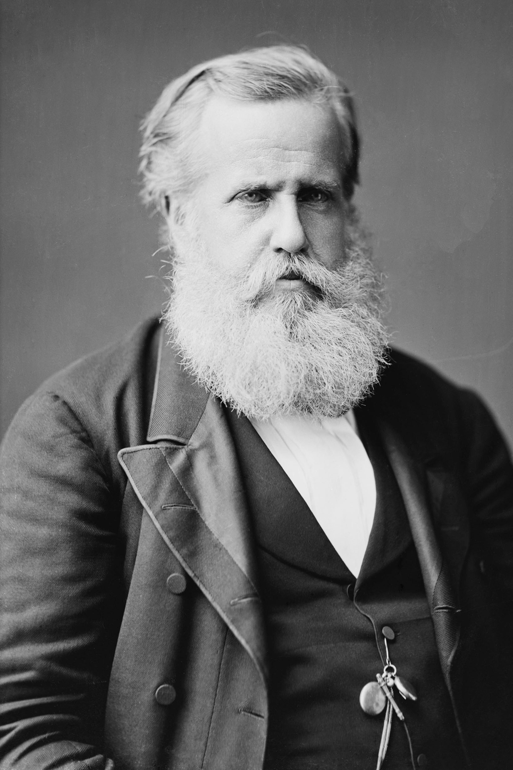 D. Pedro II <a style='float:right' href='https://www3.al.sp.gov.br/repositorio/noticia/N-11-2015/fg179027.jpg' target=_blank><img src='/_img/material-file-download-white.png' width='14px' alt='Clique para baixar a imagem'></a>