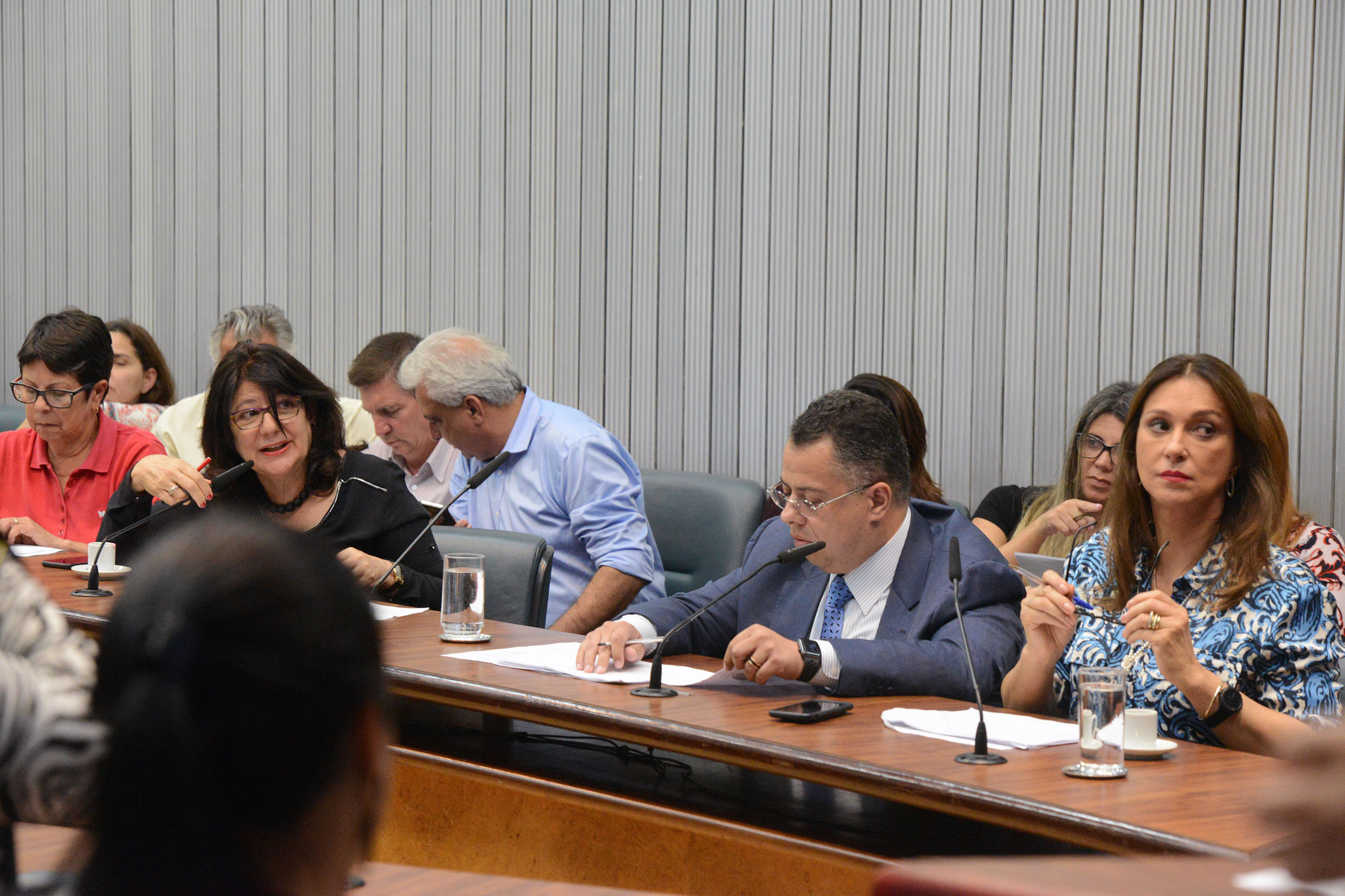 Parlamentares na comissão<a style='float:right' href='https://www3.al.sp.gov.br/repositorio/noticia/N-11-2018/fg228064.jpg' target=_blank><img src='/_img/material-file-download-white.png' width='14px' alt='Clique para baixar a imagem'></a>
