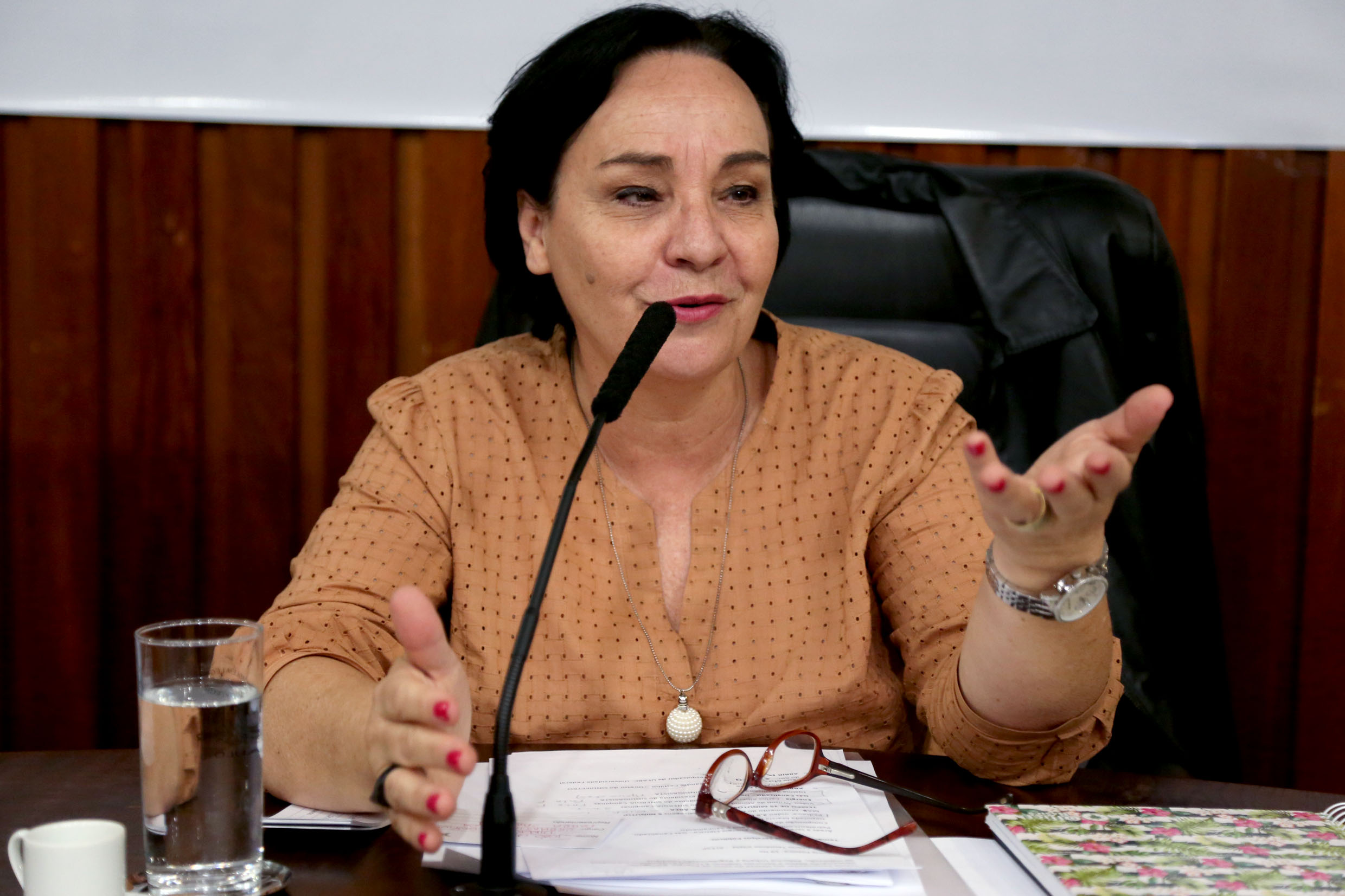 Márcia Lia<a style='float:right' href='https://www3.al.sp.gov.br/repositorio/noticia/N-12-2019/fg245051.jpg' target=_blank><img src='/_img/material-file-download-white.png' width='14px' alt='Clique para baixar a imagem'></a>